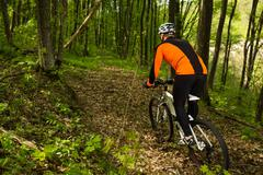 Cyclist Riding the Bike in Beautiful Spring Forest Stock Photos