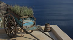 Green plants decoration in Santorini, Greece close up Stock Footage