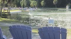 Swimming Florida natural Hot Springs Stock Footage