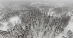 Aerial Flying Over Snowy Trees in Hokkaido Wilderness Near Niseko and Sapporo Stock Footage