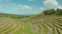 Rice Field Terrace Aerial Shot. Philippines Stock Footage