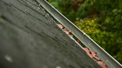 Raindrops falling in the eaves Stock Footage