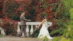 Newlywed kissing on nature Stock Footage
