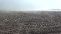 4K Timelapse Fog in Agriculture Field, Vapor, Fume, Steam on Colza, Rape - stock footage