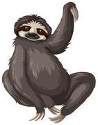 Sloth with black fur - stock illustration