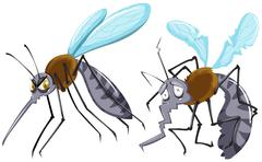 Mosquitoes strong and weak Stock Illustration