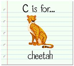 Flashcard letter C is for cheetah Stock Illustration