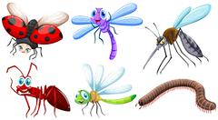 Different kind of insects - stock illustration