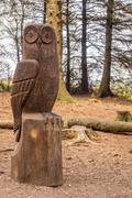 Wood carvings at Beacon Fell Country Park. Stock Photos