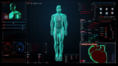 Skeletal, blood vascular system inside scanning Human in digital display. - stock footage