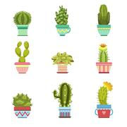 Cactus In Pot Collection Stock Illustration