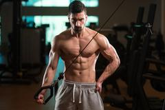 Triceps Exercise Of A Young Bodybuilder Stock Photos