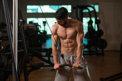 Young Man Exercising Triceps In The Gym Stock Photos