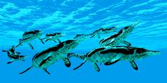 Cymbospondylus Marine Reptiles Stock Illustration
