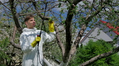 Man spraying trees from pests Stock Footage