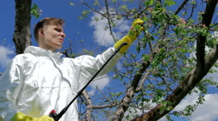 Man spraying tree Stock Footage
