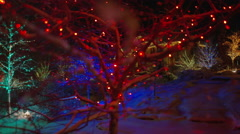 Wide shot of Christmas decorations in snowy neighborhood / Cedar Hills, Utah, Arkistovideo