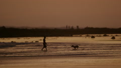 Wide panning shot of boy and dog playing on beach / Esterillos, Punta Arenas, Stock Footage