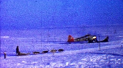 1957: Winter sled dogs riding past broken airplane into wilderness. Stock Footage
