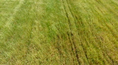 Green Field, 4K Clip Captured by Drone Cam Stock Footage