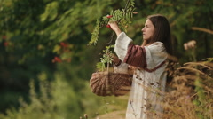 Beautiful young woman in traditional ukrainain clothes picking guelder rose Stock Footage