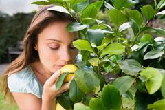 Woman smelling lemon on lemon tree - stock photo