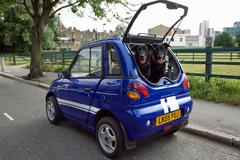 Dogs panting in boot of electric car Stock Photos