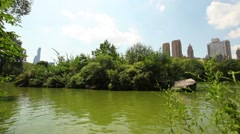 Lake In Central Park On A Sunny Day Stock Footage