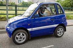 Dog panting in electric car Stock Photos