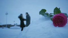 Man and woman swear on background of roses in snowdrift Stock Footage