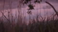 Tilt sunset lake Stock Footage