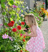 Young girl smelling flower Stock Photos