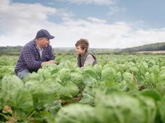 Farmer And Son In Crop Field Stock Photos