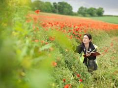 Female Ecologist In Poppy Field - stock photo