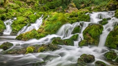 Beautiful forest waterfalls over mossy rocks. Mountain river. Zoom out Stock Footage