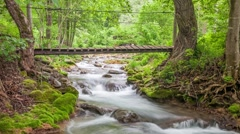 Handmade wooden bridge over small mountain river. Camera panning. Stock Footage