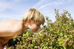 Boy Smelling Flowers Stock Photos