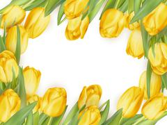 Isolated tulip frame. EPS 10 Stock Illustration
