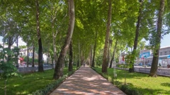 Trees along the avenue Rudaki hyperlapse in Dushanbe Stock Footage