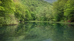 Clean forest lake. Water reflection. Horizontal panning Stock Footage
