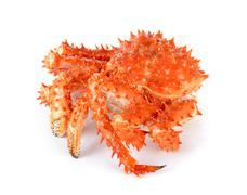 Alaskan king crab in isolated white background Stock Photos