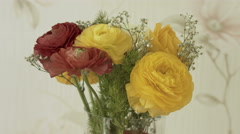 Bouquet of ranunculus in a transparent vase on the table Stock Footage