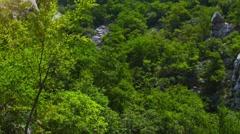 Velika Paklenica karst river canyon Stock Footage