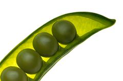 Four peas in a pod on white background Stock Photos