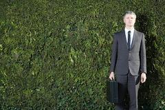 Businessman in front of hedge - stock photo