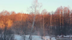 Winter wonderland. Panorama of winter forest landscape. - stock footage