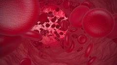 Red blood cells move along the vein. 3d animation Stock Footage