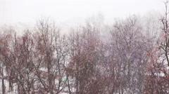 Snowy weather Stock Footage