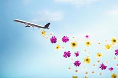 A plane emitting flowers Stock Photos