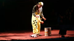 Glybokaya,Circus clown show with rubber chicken Stock Footage